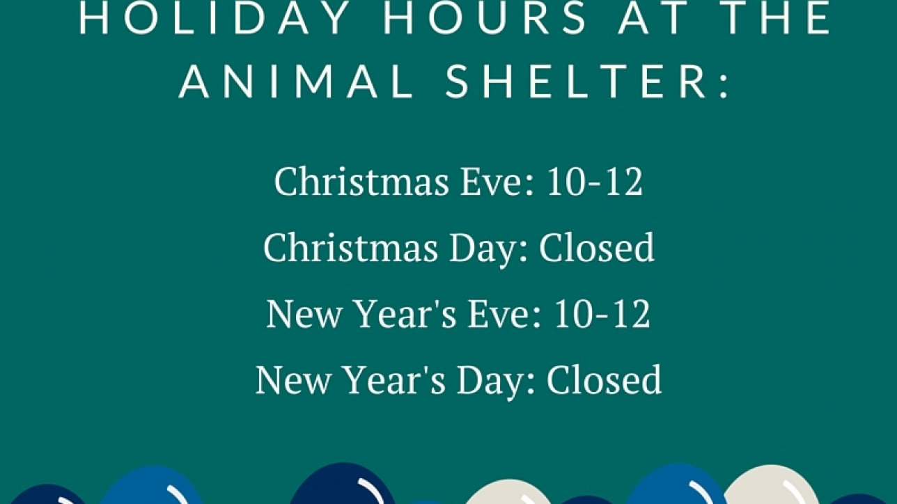 Christmas Hours.Holiday Hours At The Shelter Mountain Humane