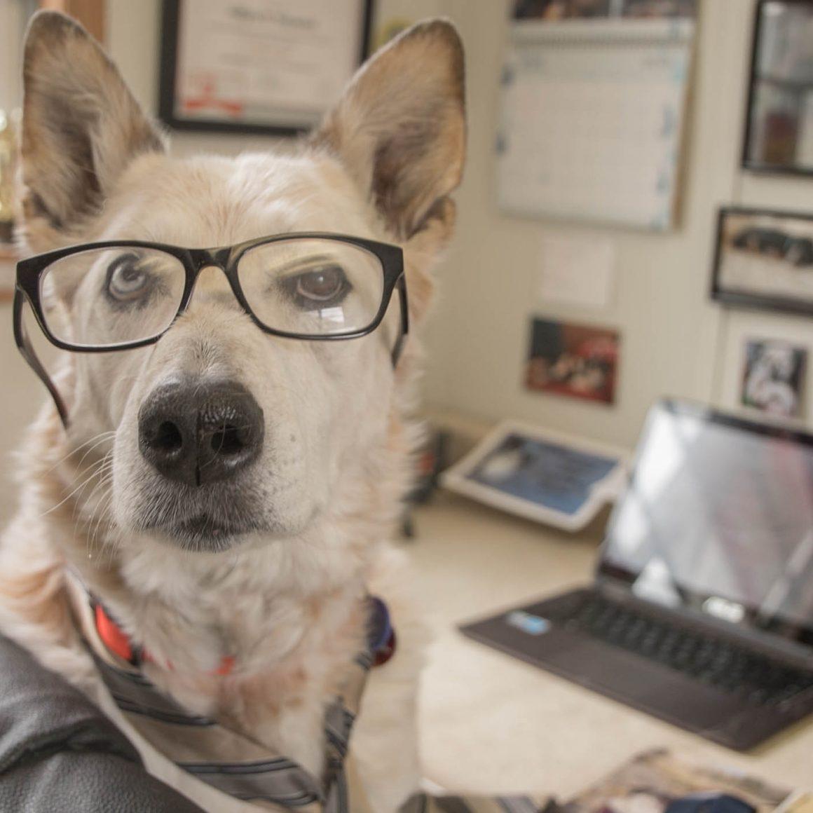 Darlin-Employee