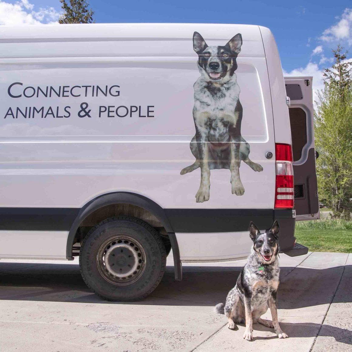 Your Pet on the Mountain Humane Outreach Van - Mountain Humane